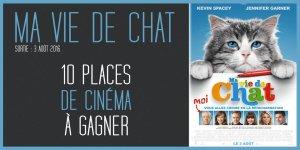 Illustration du jeu concours 10 places de cinéma à gagner pour le film MA VIE DE CHAT, avec Kevin Spacey