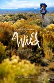 Affiche du film : Wild