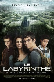 background picture for movie Le Labyrinthe