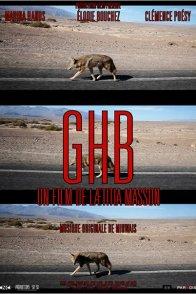 Affiche du film : G.H.B