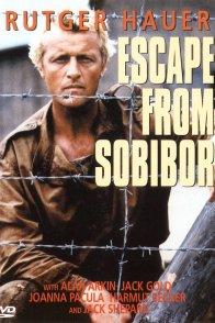Affiche du film : Le rescape