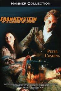 Affiche du film : Frankenstein et le monstre de l'enfe