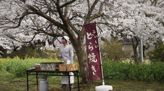Affiche du film : Les Délices de Tokyo