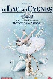 background picture for movie Le Lac des cygnes (Ballet du Bolchoï)