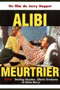 Affiche du film : L'alibi meurtrier