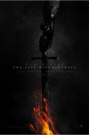 Affiche du film Le Dernier chasseur de sorcières