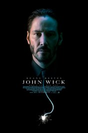 background picture for movie John Wick