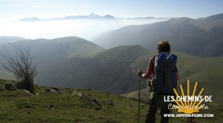 Affiche du film : Les Chemins de Compostelle