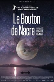 background picture for movie Le Bouton de nacre