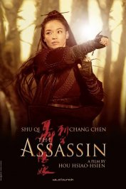 background picture for movie The Assassin