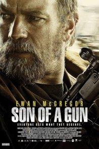 Affiche du film : Son of a Gun