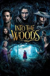 background picture for movie Into the Woods