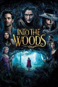 Affiche du film : Into the Woods
