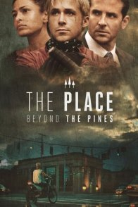 Affiche du film : The Place Beyond the Pines