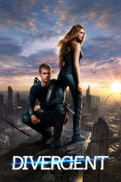 background picture for movie Divergente