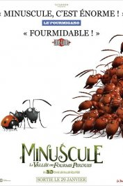 background picture for movie Minuscule - La Vallée des Fourmis Perdues