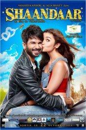 background picture for movie Shaandar