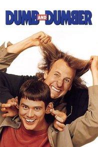 Affiche du film : Dumb and dumber