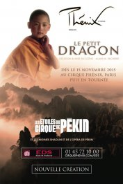 background picture for movie Le Petit Dragon