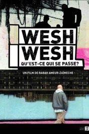 background picture for movie Wesh Wesh, qu'est-ce qui se passe ?