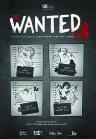 Affiche du film : Les 18 Fugitives