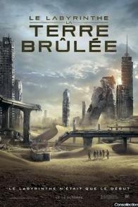 Affiche du film : Le Labyrinthe : la terre brûlée