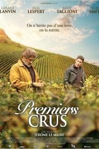 Affiche du film : Premiers crus