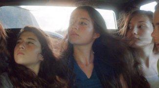 Affiche du film : Mustang
