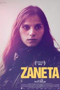 Affiche du film : Zaneta