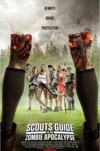 Affiche du film : Manuel de survie à l'apocalypse zombie