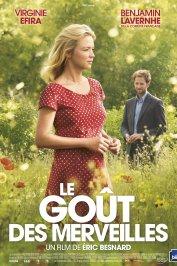 background picture for movie Le Goût des merveilles