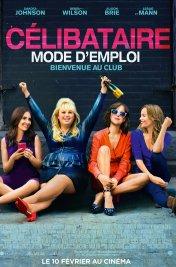 Affiche du film : Célibataire, mode d'emploi