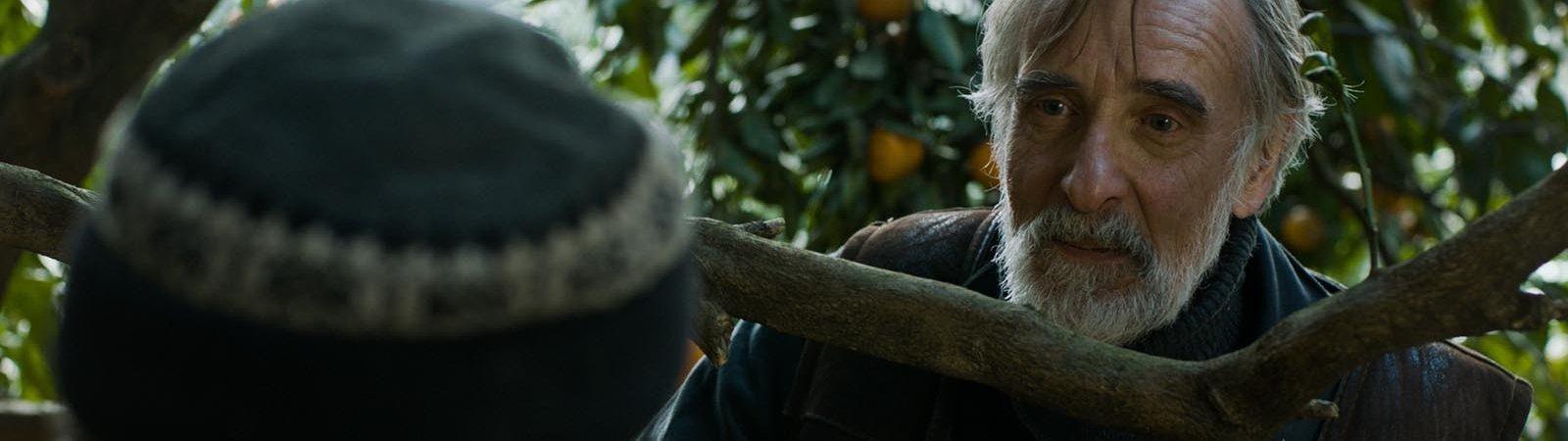 Photo du film : Mandarines