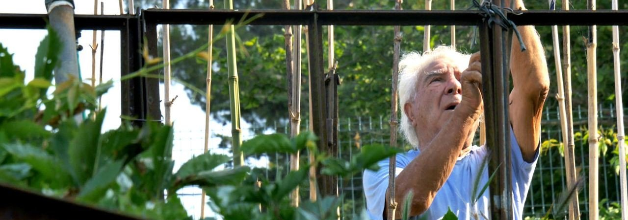 Photo du film : Le Potager de mon grand-père