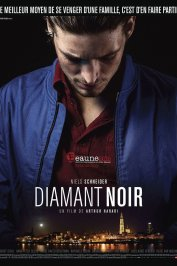 background picture for movie Diamant noir
