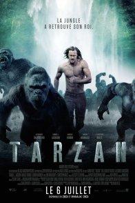 Affiche du film : Tarzan