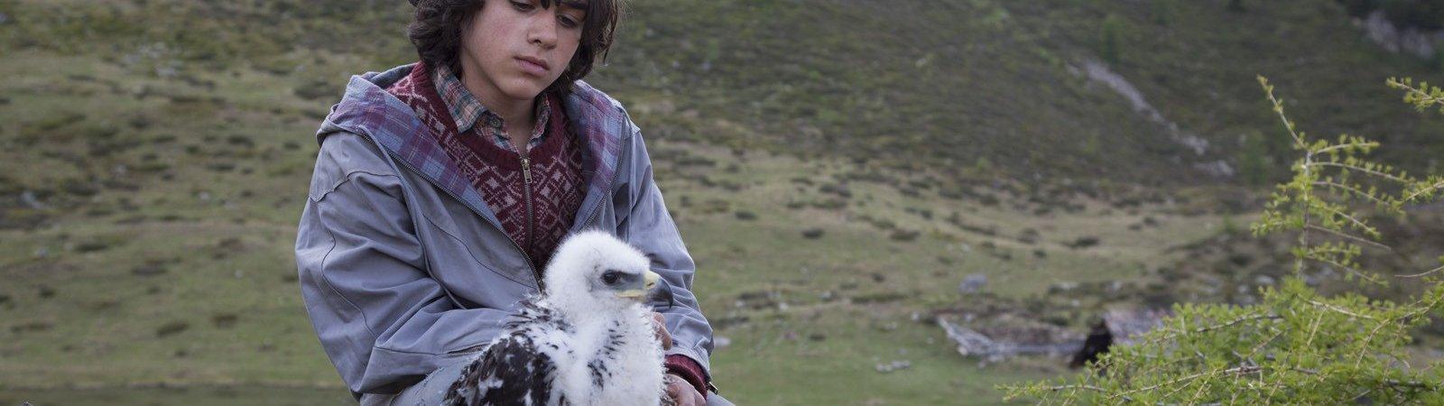 Photo du film : L'Aigle et l'Enfant