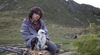 Affiche du film : L'Aigle et l'Enfant