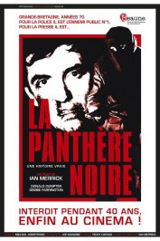 background picture for movie La Panthère noire