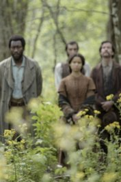 background picture for movie Free State of Jones
