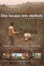 background picture for movie Des locaux très motivés