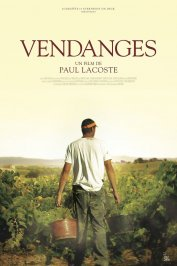 background picture for movie Vendanges