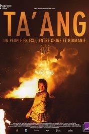 background picture for movie Ta'ang, un peuple en exil entre Chine et Birmanie