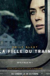 Affiche du film : La Fille du train