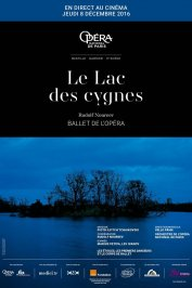 background picture for movie Le lac des cygnes