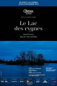 Affiche du film : Le lac des cygnes