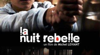 Affiche du film : La Nuit rebelle