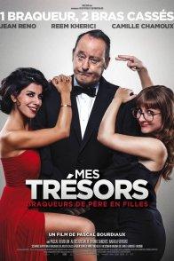 Affiche du film : Mes trésors