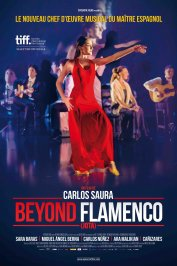 background picture for movie Beyond Flamenco