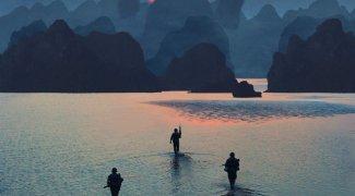 Affiche du film : Kong: Skull Island